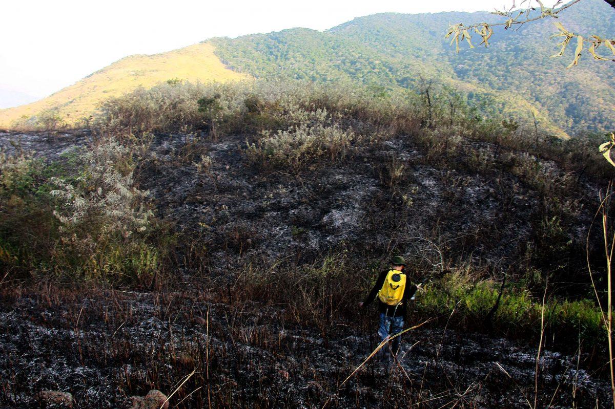 Protetores pedem ajuda à população no combate aos incêndios florestais em Nova Iguaçu